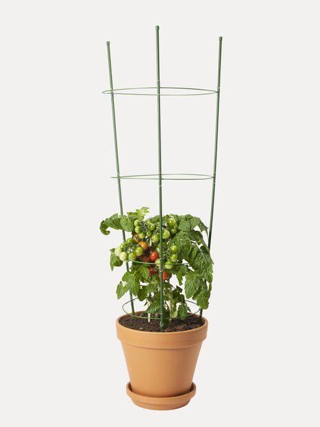 Växtstöd kon, Höjd 90 cm, Grön