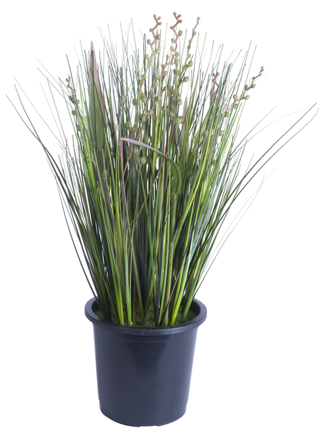 Gräs konstgjord, Höjd 36 cm, Grön