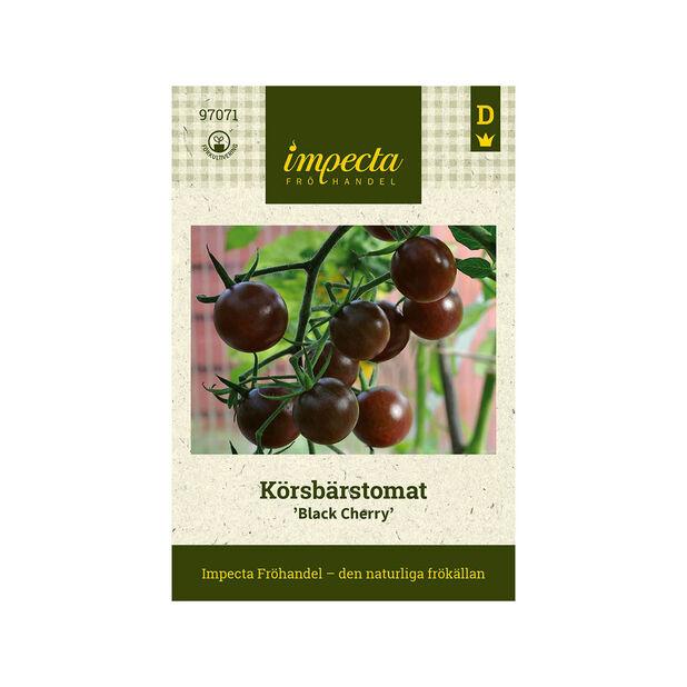 Körsbärstomat 'Black Cherry', Svart