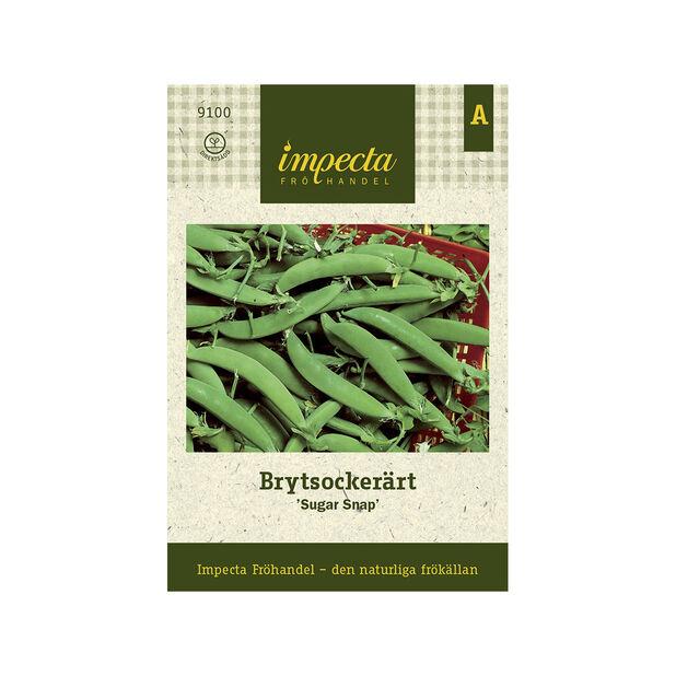Brytsockerärt 'Sugar Snap', Grön