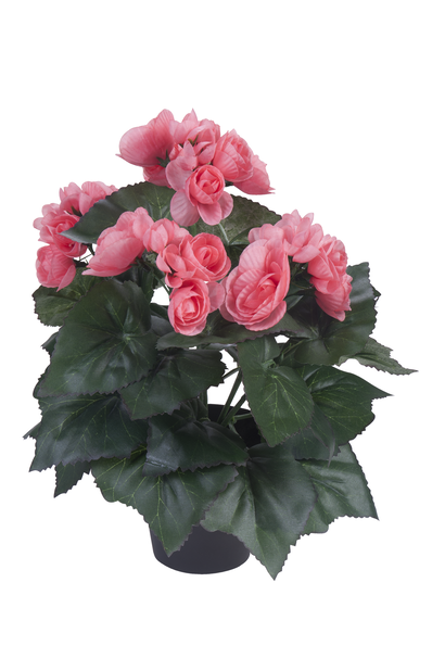 Begonia H32 cm, rosa, konstgjord