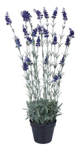 Lavendel konstgjord, Höjd 76 cm, Beige