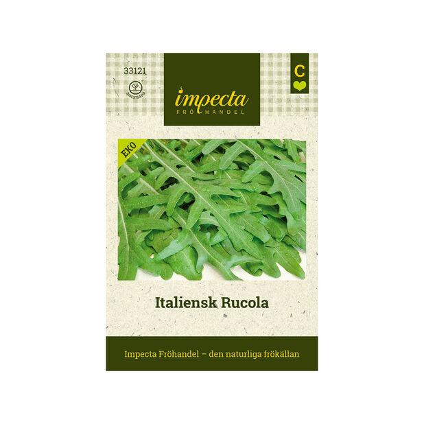 Italiensk Rucola, Grön
