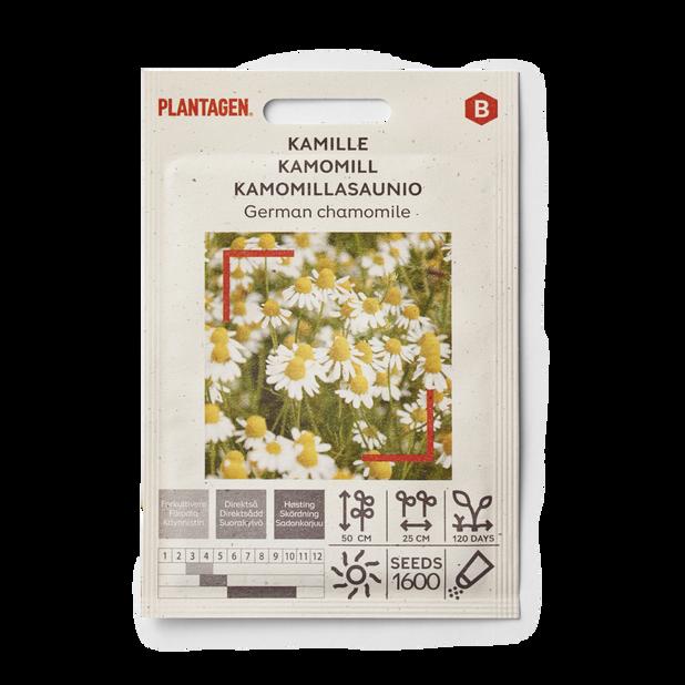 Kamomill 'German'