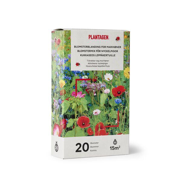 Blomsterblandning för nyckelpigor, 15 kvm, Flerfärgad