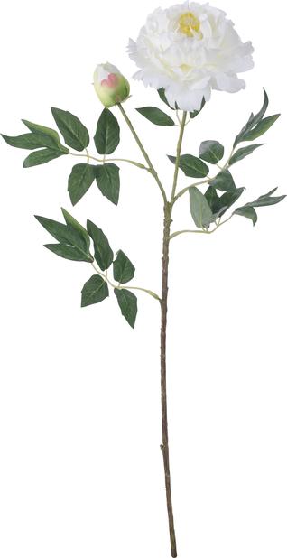 Pion konstgjord, Höjd 61 cm, Svart