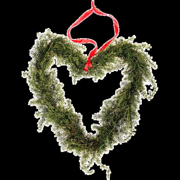 Kranshjärta buxbom, Höjd 25 cm, Flera färger