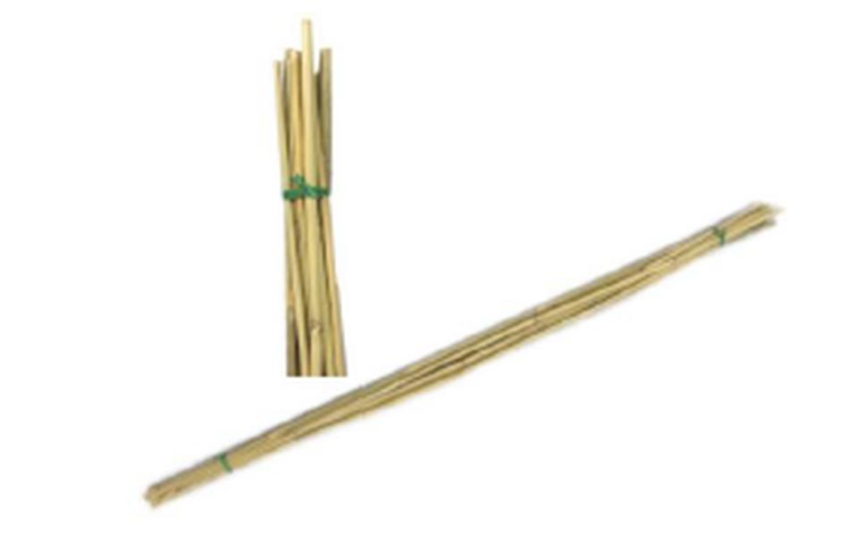 Växtstöd bambu, Höjd 90 cm, Beige