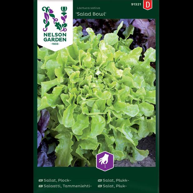 Plocksallat 'Salad Bowl', Flerfärgad