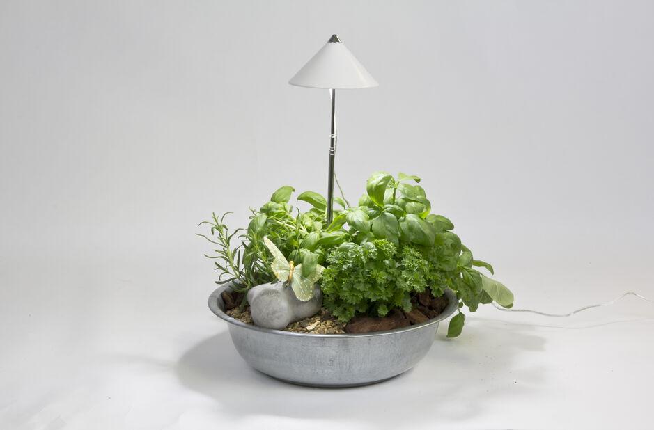 Växtbelysning Sunlite för kruka, Höjd 100 cm, Vit