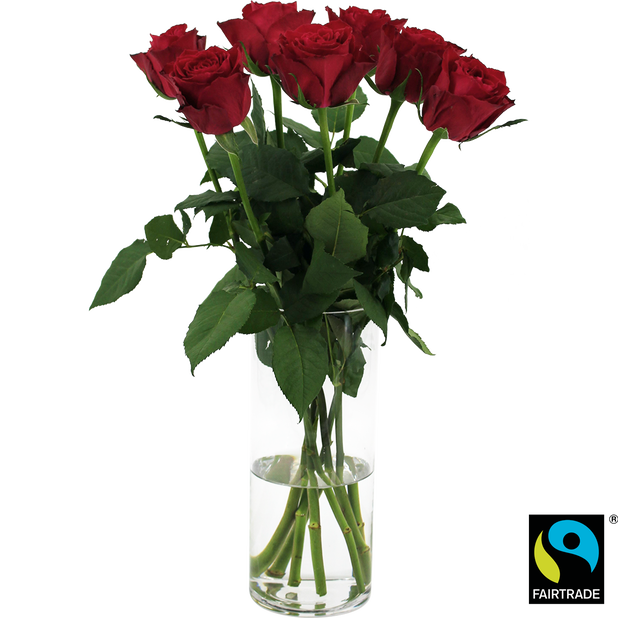 Rosor, Höjd 50 cm, Röd