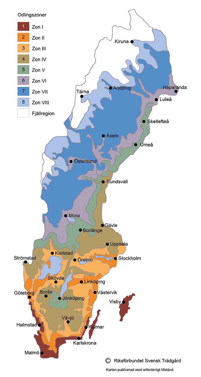 Växtzoner Sverige